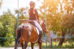 Cheval d'équitation de jeune fille sur la concurrence équestre images libres de droits