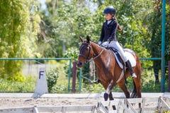 Cheval d'équitation de jeune fille sur la concurrence équestre photos libres de droits