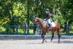 Cheval d'équitation de jeune fille sur la concurrence équestre photos stock
