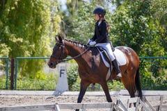 Cheval d'équitation de jeune fille sur la concurrence équestre image stock
