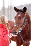 Cheval de baie de alimentation d'adolescente sur le champ d'hiver Photo libre de droits