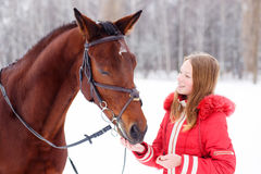Cheval de baie de alimentation d'adolescente sur le champ d'hiver Photo stock