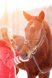 Cheval de baie de alimentation d'adolescente sur le champ d'hiver Photos libres de droits