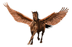Cheval de Brown Pegasus galopant avec les ailes ouvertes Photos stock