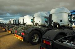 Cheval de camion Photos libres de droits