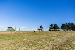 Cheval de course Rider Running Training Track photo libre de droits