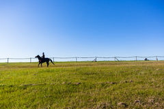 Cheval de course Rider Running Training Track images stock