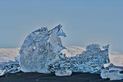 Cheval de glace Images stock
