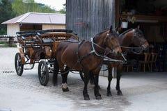cheval dessiné par chariot Images libres de droits