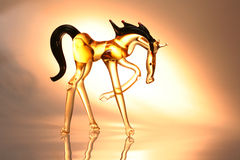 Cheval en verre Photographie stock