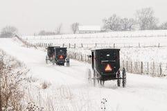 Cheval et avec des erreurs amish, neige, tempête Photo stock