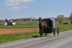 Cheval et boguet amish Images stock