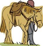 Cheval et cavalier Images libres de droits