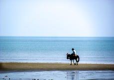 Cheval et cavalier errant sur une plage Photographie stock