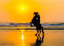 Cheval et cavalier saluant le soleil d'or Photos stock