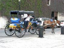Cheval et chariot Photos libres de droits