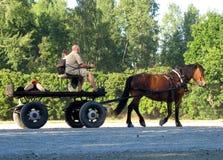 Cheval et chariot Photographie stock libre de droits