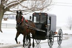 Cheval et chariot amish Image libre de droits