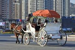 Cheval et chariot au grand dos de Dalian Xinghai Photographie stock libre de droits
