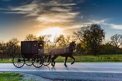 Cheval et chariot sur la route dans l'Oklahoma photos libres de droits