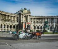 Cheval et chariot viennois photo stock