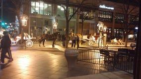Cheval et chariots Denver image libre de droits