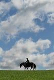 Cheval et ciel Images libres de droits