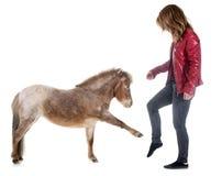 Cheval et fille miniatures de Falabella Images stock