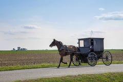 Cheval et poussette amish photo stock