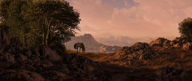 Cheval frôlant dans le sud-ouest Photo libre de droits