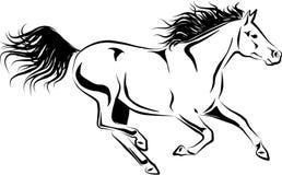 Cheval galopant Images libres de droits