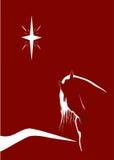Cheval illuminé par les étoiles Photo stock