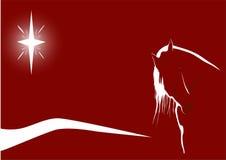 Cheval illuminé par les étoiles sur le rouge images stock