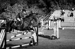 Cheval noir et saut de tour de jockey de jeune homme beau au-dessus de la fourche dans le sport équestre noir et blanc avec Octob Photo stock