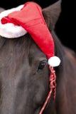 Cheval noir utilisant le chapeau de Santa Photographie stock