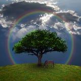 Cheval près de l'arbre Image libre de droits