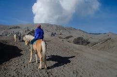 Cheval près de Volcano Bromo, Java, Indonésie Photos libres de droits