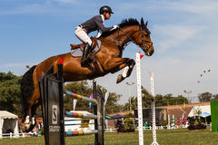 Cheval Rider Gate Jump Flight Image stock