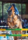 Cheval rouge sautant Photo stock