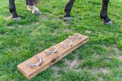 Cheval sans fers ? cheval dans le p?turage pendant le coucher du soleil 4 fers ? cheval mont?s sur un conseil en bois images stock