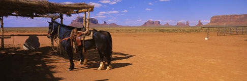 Cheval sur la nation de Navajo Photo stock