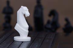 Cheval sur le clavier images libres de droits