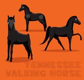 Cheval Tennessee Walking Cartoon Vector Illustration Image stock