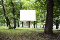 Chevalet avec la toile et le parc ou la forêt vert sur le fond, rendu 3d Photo libre de droits