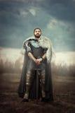 Chevalier avec l'épée dans un domaine photographie stock