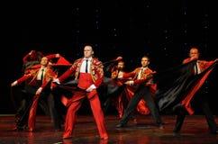 Chevalier de danse du monde de l'Autriche gloire-espagnole de flamenco-le Photo libre de droits