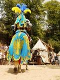 Chevalier médiéval Horse Costumes Image stock