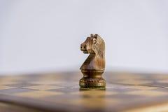 Chevalier, partie d'échecs avec le fond blanc Photographie stock