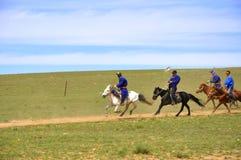 Chevaliers de la Mongolie Photo stock