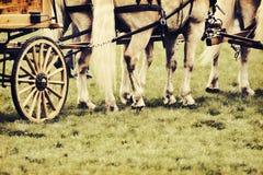 Chevaux armés à un chariot - rétro image libre de droits
